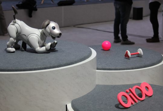 robot dog aibo
